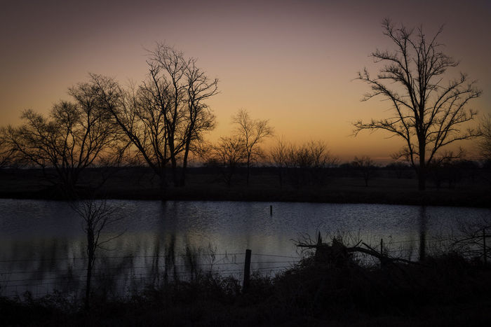 Morning Reflection off the pond Beautiful Calm Clear Sky Landscape_Collection Morning Pasture Pond Reflection Silhouette Tranquility Trees Winter Beauty In Nature Clear Skies Colorful Colorfull Environment Environmental Conservation Horizon Over Water Landscape Scenery Water