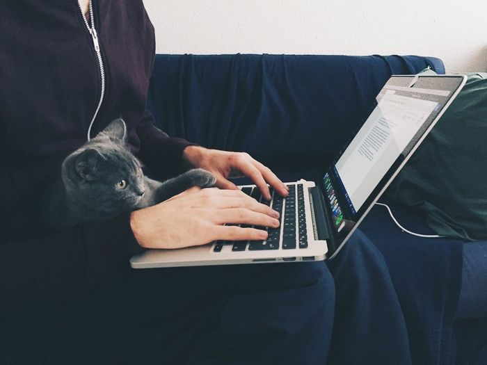 Midsection of woman with cat working on laptop at home