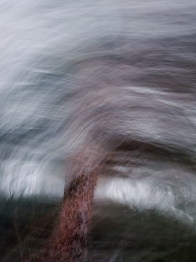 Abstract Sachsenwald Photoart Forest Motion Blurred Motion Water No People Long Exposure One Animal Animal Animal Themes Nature Mammal Day Speed Vertebrate Land Animal Wildlife Wave Animals In The Wild Full Frame Outdoors Flowing Water Power In Nature Flowing