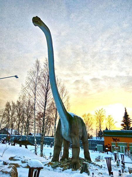 My Year My View Dinosaur Dino Park Dino's Photography Dinosaur World Dinosaurs Time