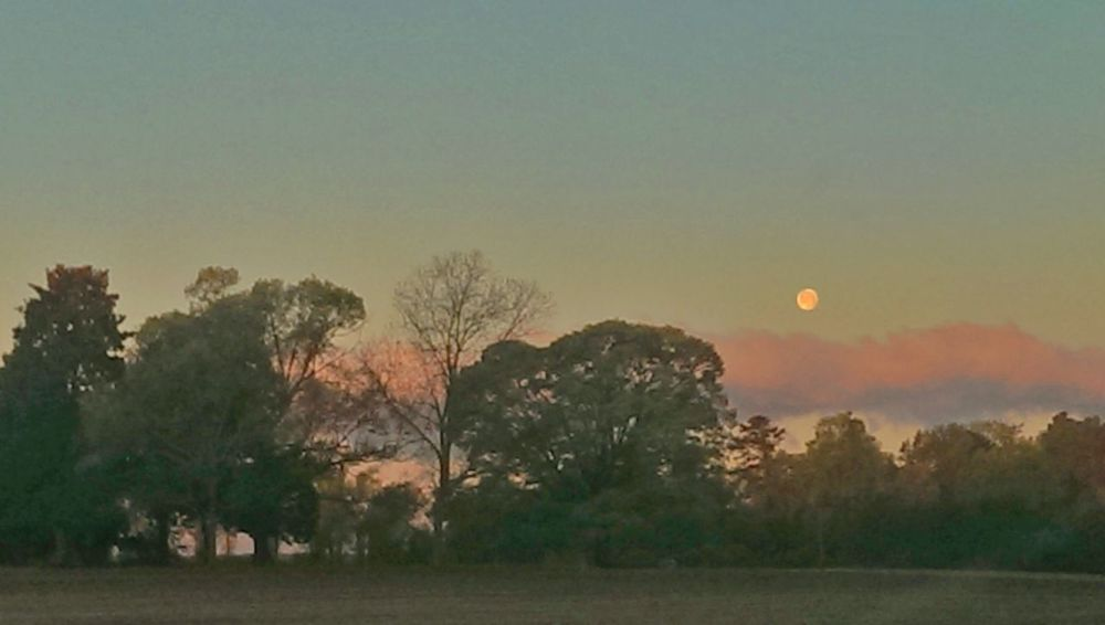 Sun to the left of me, and this to the right Moon Full Moon Morning Moon Good Morning Moon