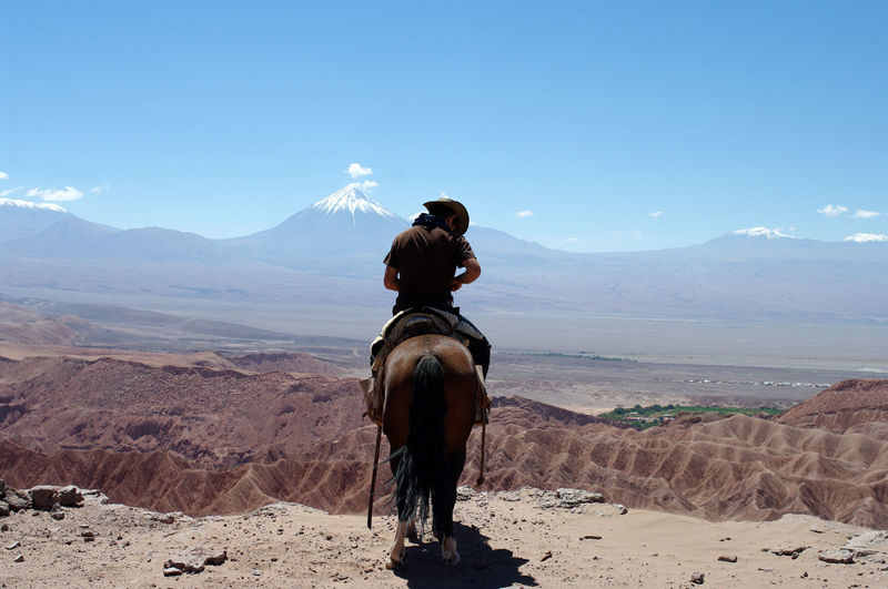 One of my best horseback ride, in the Atacama desert Chile Cowboy Death Valley Desert Excursion Lonely Rider Altiplano Animal Animal Themes Animal Wildlife Arid Climate Atacama Beauty In Nature Climate Domestic Domestic Animals Environment Gaucho Horse Land Livestock Mammal Mountain Mountain Range Nature One Animal Outdoors Pets Real People Riding Salted Desert Scenics - Nature Sky South America Tourism Travel Destinations Vertebrate Volcano The Great Outdoors - 2018 EyeEm Awards The Traveler - 2018 EyeEm Awards Redefining Menswear