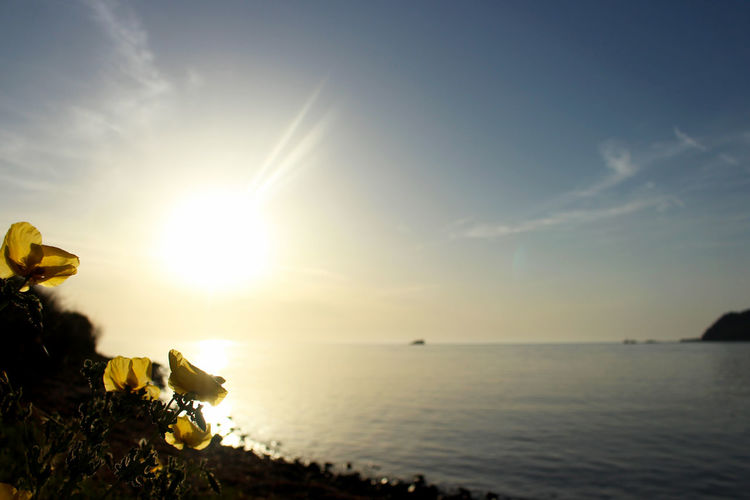 Beauty In Nature Bright Calm Greece Greece, Loutraki Horizon Over Water Idyllic Lens Flare Lesvos Lesvos Greece Nature No People Outdoors Remote Scenics Sea Sky Sun Sunbeam Sunlight Sunny Sunset Tranquil Scene Tranquility Water