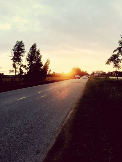 Tree Sky Road Transportation Sunset Plant Nature Beauty In Nature First Eyeem Photo