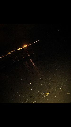 4:30 A.m Beachphotography Dog Walking