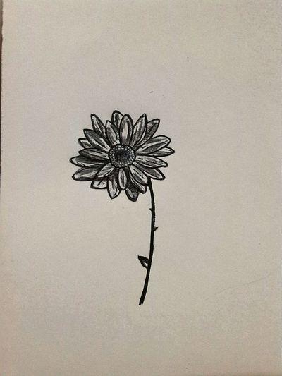 Autor: Luisina © Art, Drawing, Creativity My Drawing (: My Draw ♥ Draws Drawings Draw Drawing Flor Flores