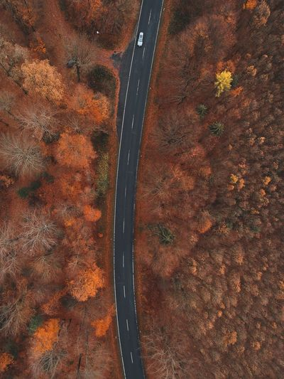 High angle view of road during autumn