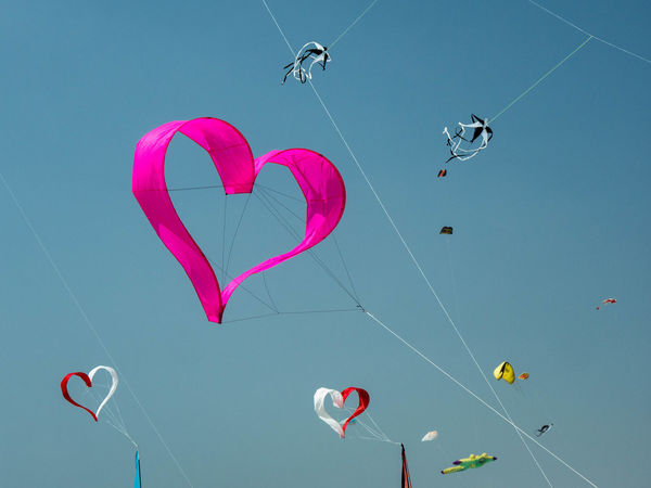 Heart shaped kite among others at the annual Kite festival in Bray-Dunes, France Event Kites Activity Adventure Clear Sky Day Festival Flying Freedom Heart Shape Heartshape Kite - Toy La Ronde Des Ventes Leisure Activity Love Low Angle View Multi Colored Nature Outdoors Positive Emotion Sky Sport Strings Attached Sunlight Wind A New Beginning A New Beginning