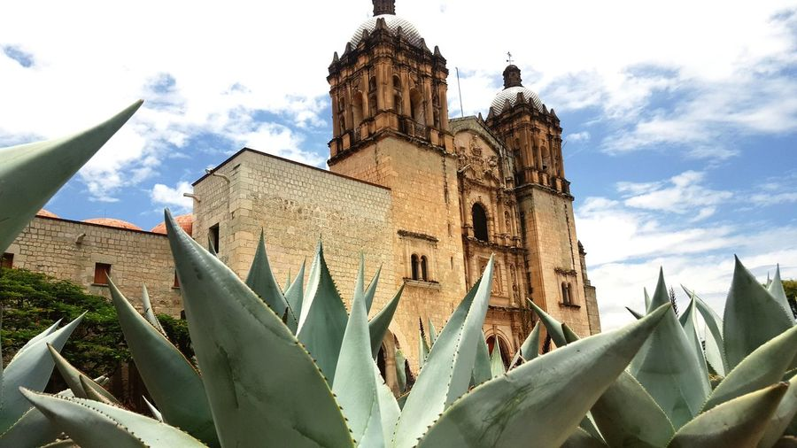 Oaxaca Oaxaca