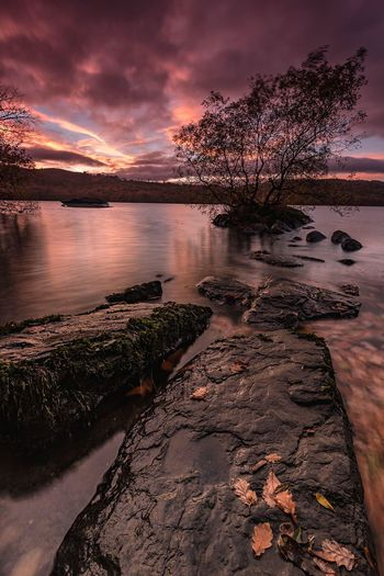 Evening Hues Windermere Sunset Travel Destinations Cumbria Landscape_photography Lakeside Lake District Cloud - Sky Scenics Dramatic Sky No People HolidayMarketing Tranquility Landscape Skyporn Sky And Clouds Sunset_collection Lake View Lake Sunset Lonely Tree TreePorn Tree Sunset Beauty In Nature Sunset And Clouds  The Great Outdoors - 2017 EyeEm Awards