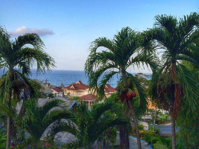 My Morning View on April 26, 2014 at Bacolet Bay, Tobago.
