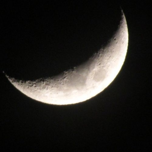 Lalunadeale