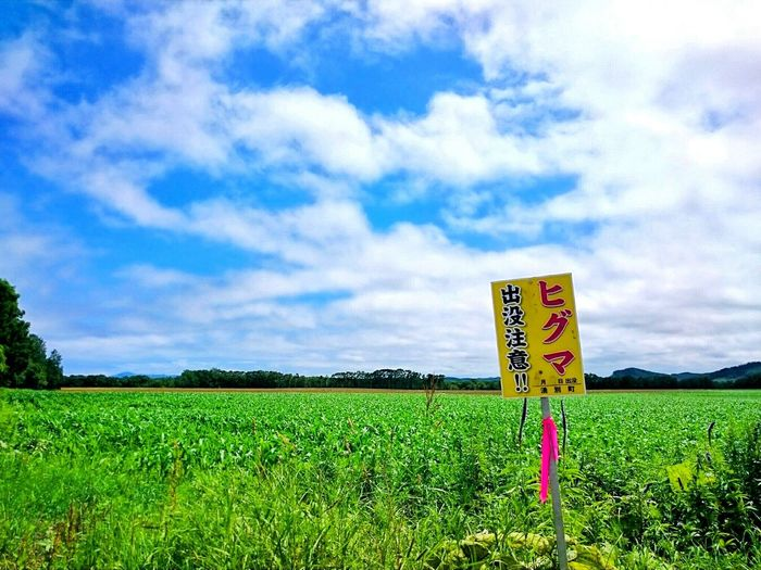 田舎では よくある看板です…。 自然 Landscape_photography Cloud - Sky EyeEm Selects EyeEmNewHere Black_chica1707 Hokkaido Hokkaido,Japan Chica's Sky 空 Japan 田舎暮らし Blue Day Sky Scenics Rural Scene Rural Area Rural Landscape Landscape Outdoors Nature