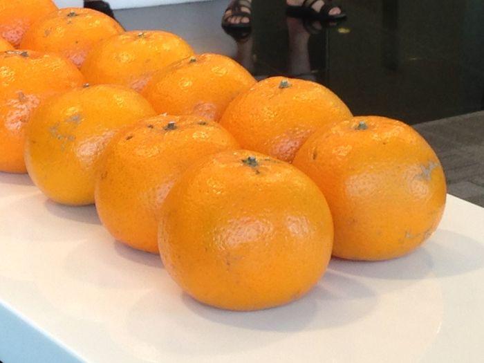 Preparing for Chinese New Year Chinesenewyear Citrus Fruit Food Freshness Fruits Healthy Eating Mandarin Orange - Fruit Orange Color First Eyeem Photo