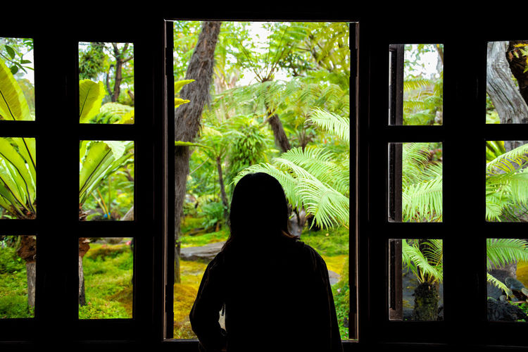 Rear view of woman looking through window