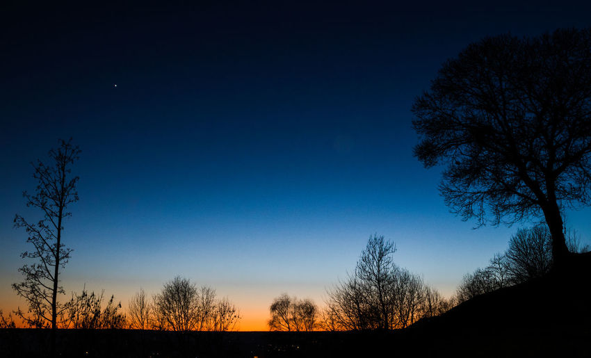 Winter sunset in north Italy Astronomy Beauty In Nature Galaxy Idyllic Landscape Midnight Milky Way Moon Nature Night No People Outdoors Scenics Silhouette Sky Space Star - Space Sunset Tranquil Scene Tranquility Tree First Eyeem Photo