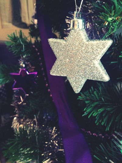 Christmas Tree Chrismas Time Chrismas Stars Chrismas Love