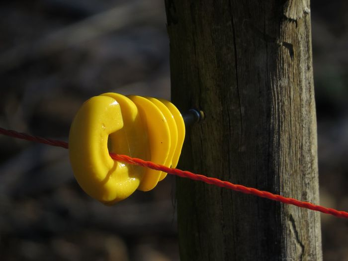 Close-Up Of Red Wire Attached By Yellow Equipment On Pole
