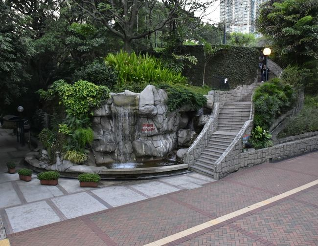 Kowloon Park Tree No People Outdoors Day Built Structure Steps Building Exterior Architecture Nature