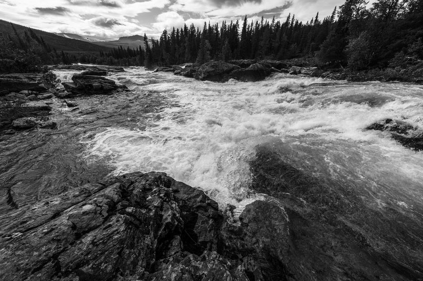 August hiking along The King's Trail in northern Sweden 2015  August Black And White Day Flowing Flowing Water Forest Hiking Kungsleden Kvikkjokk Motion Nature Non-urban Scene Northern Europe Outdoors Remote River Rock - Object Scandinavia Stream Sweden The Kings Trail Tree Water Waterfront