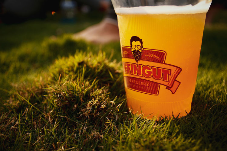beer in grass Music And Beer Grass Lawn Sunshine Summer Alcohol Drink Frothy Drink Drinking Glass Yellow Beer - Alcohol Close-up Grass Food And Drink Lager Brewery Craft Beer Artisanal Food And Drink Oktoberfest Summer In The City EyeEmNewHere