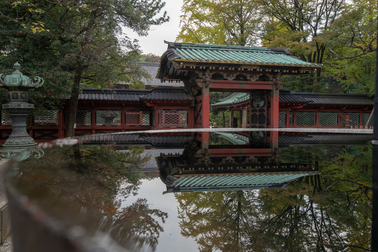 Japan Architecture Built Structure Place Of Worship Spirituality Shrine Shinto Shrine Reflection Tokyo