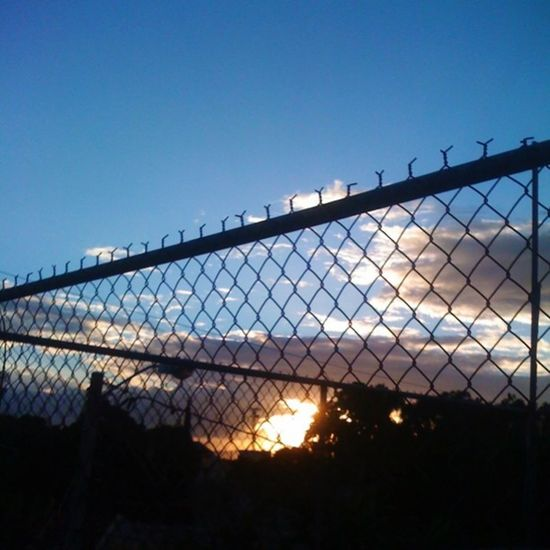 Proud of my 3g Throughthefence Sunset Iphonephoto iphonegraphy clouds cloud skyasotea tree now