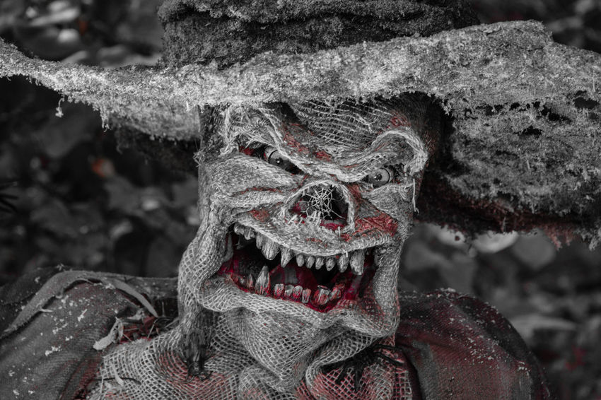 Angry Scarecrow Angry Bad Teeth Blackandwhite Blood Bw Close-up Creepy Halloween Horror Mad Mean No People Scarecrow Teeth