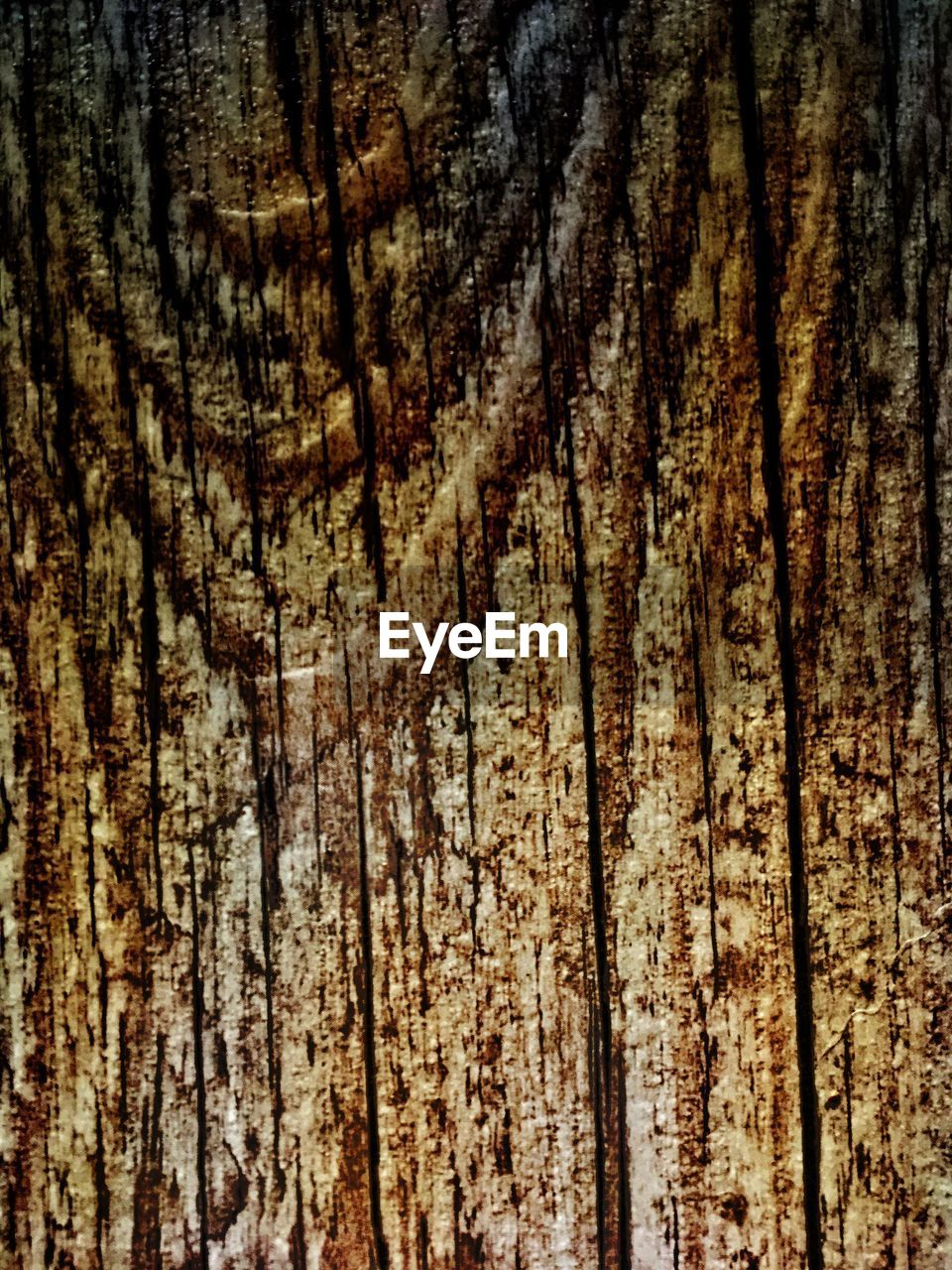 textured, rough, pattern, backgrounds, nature, full frame, wood - material, no people, brown, close-up, tree, tree trunk, wood grain, tree ring, day, outdoors