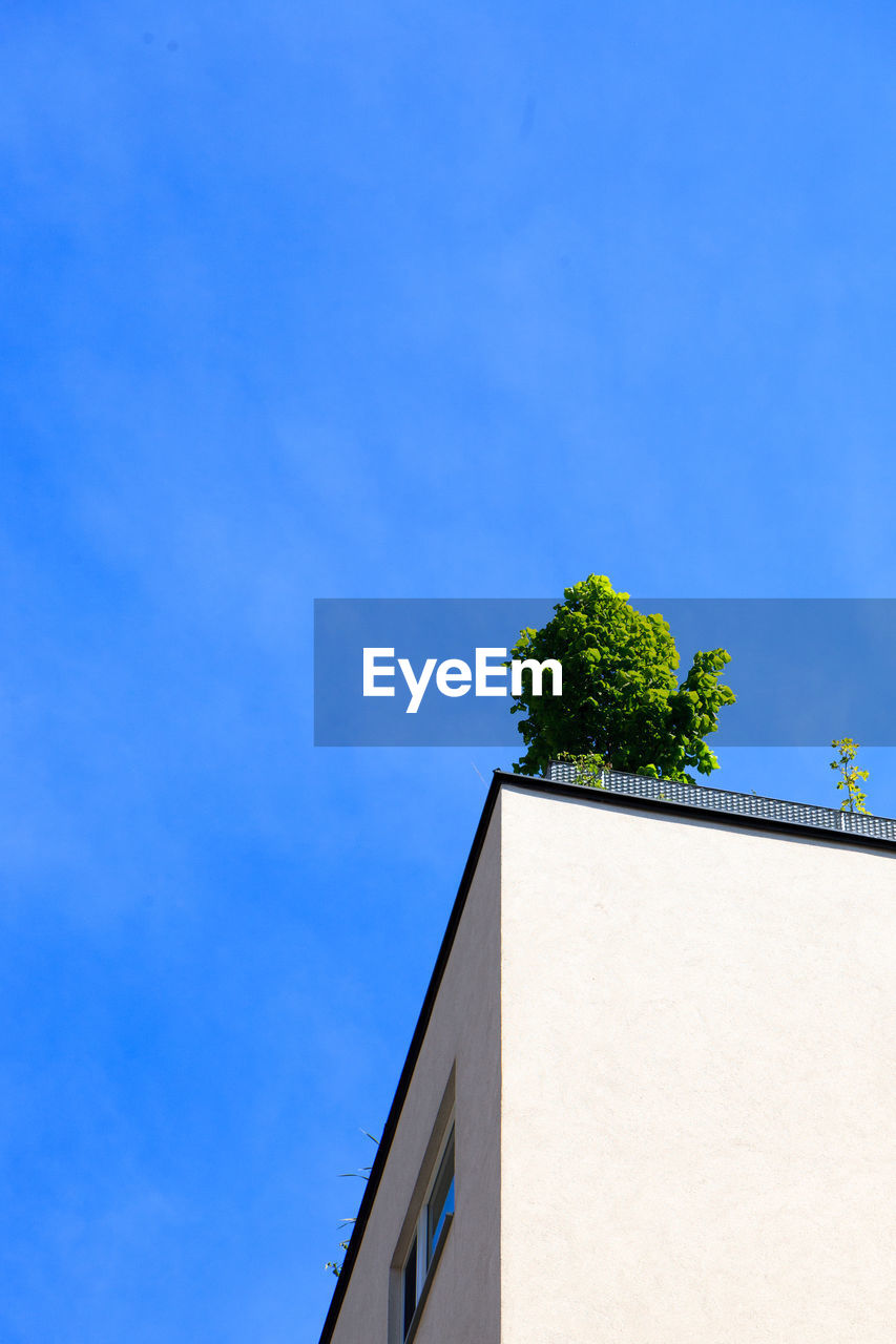 architecture, low angle view, built structure, building exterior, no people, blue, day, outdoors, tree, nature, clear sky, sky