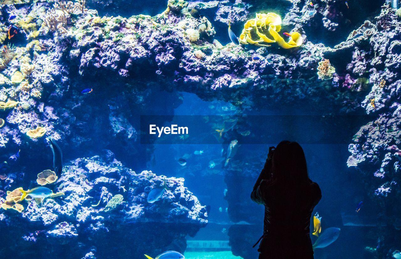 Silhouette Woman Standing In Oceanographic Museum