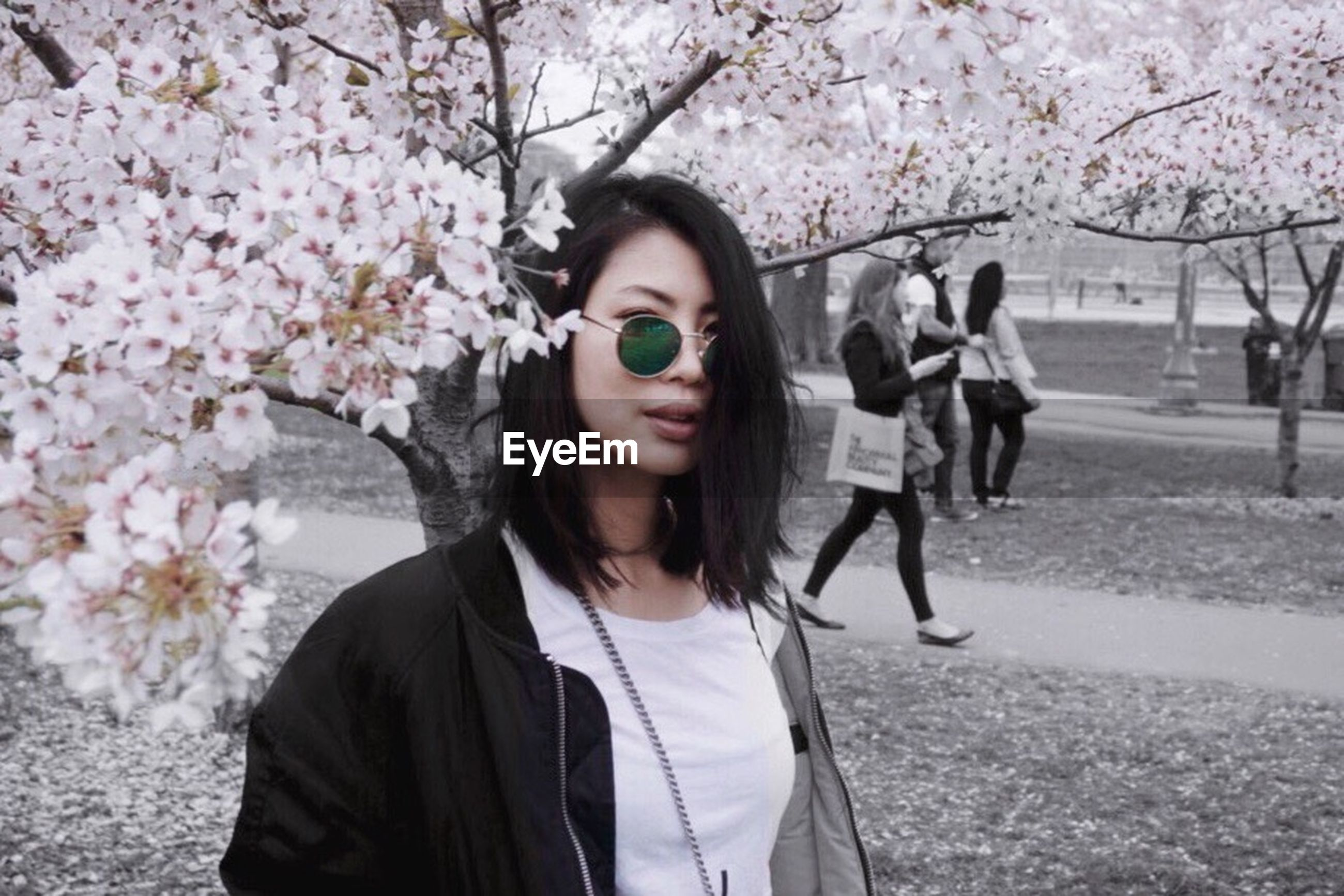 flower, tree, one person, front view, blossom, young adult, eyeglasses, day, outdoors, real people, springtime, growth, one young woman only, branch, young women, fragility, beauty in nature, freshness, nature, one woman only, close-up, adult, adults only, people