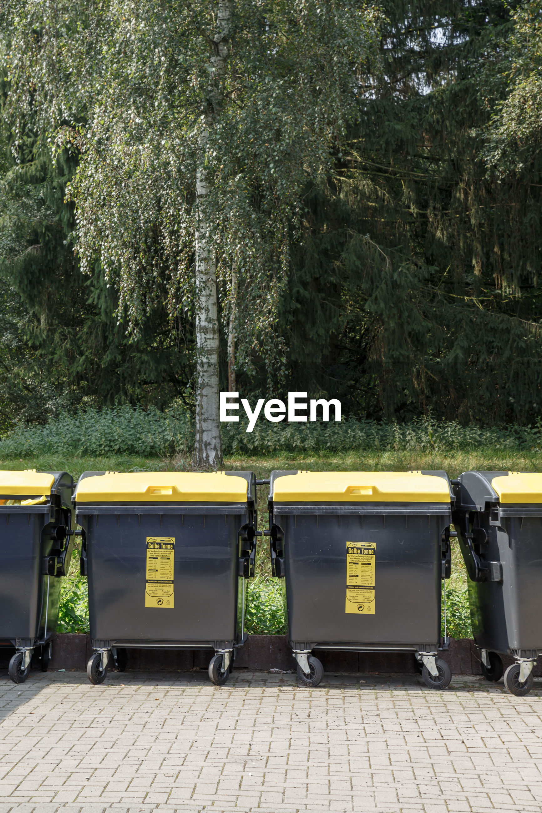 Wheeled garbage cans against trees