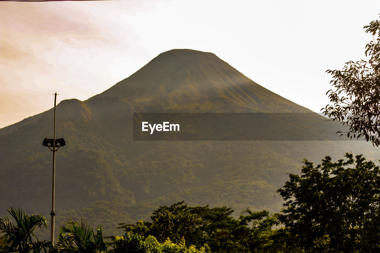 mountain, sky, plant, tree, scenics - nature, tranquility, no people, beauty in nature, nature, tranquil scene, day, non-urban scene, low angle view, idyllic, growth, mountain range, outdoors, mountain peak, volcano, clear sky