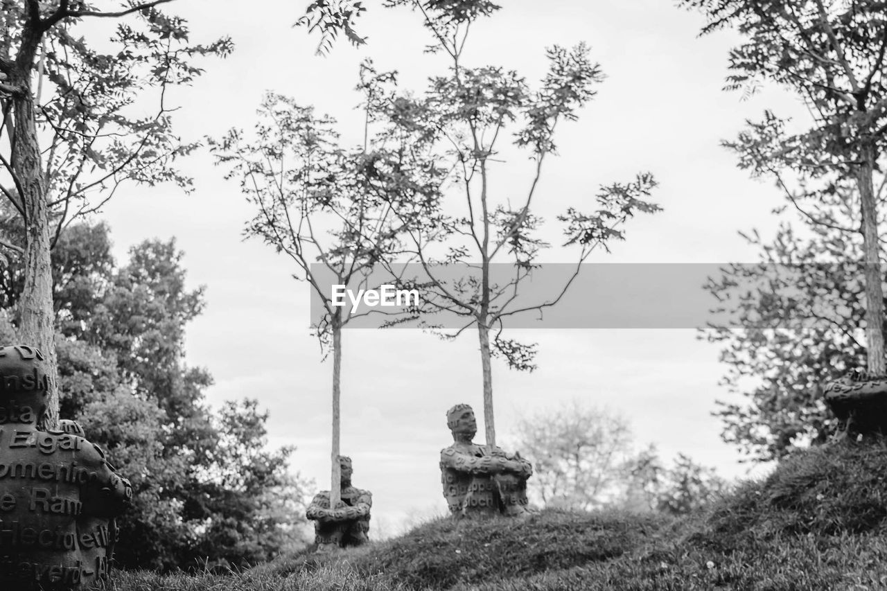tree, real people, outdoors, day, field, sky, growth, nature, one person, sitting, statue, grass, beauty in nature