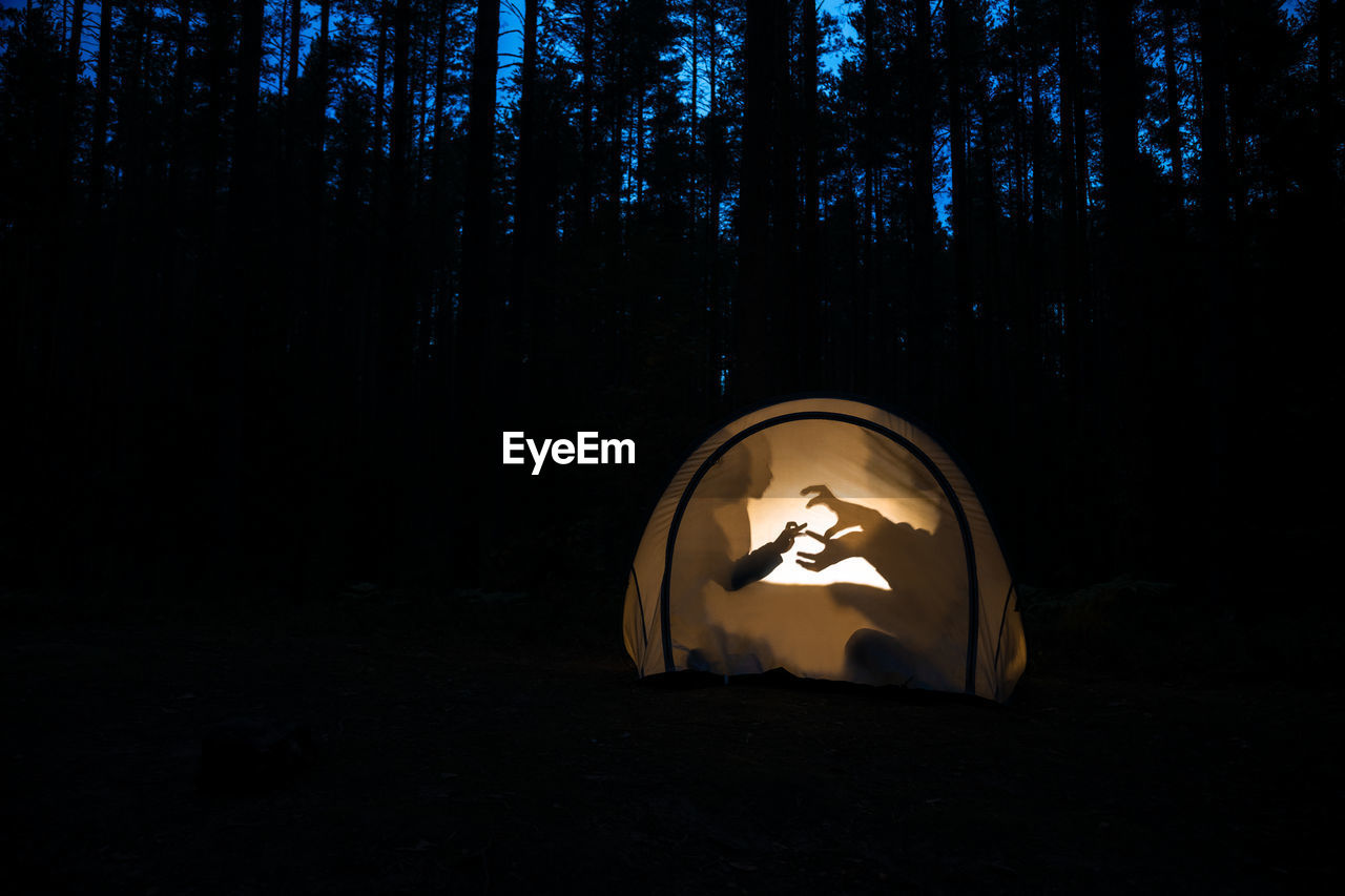 Illuminated tent with shadow against trees in forest during dusk