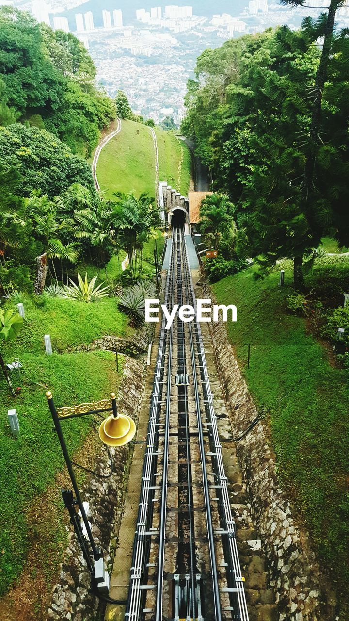 rail transportation, track, railroad track, tree, plant, transportation, nature, day, high angle view, connection, public transportation, diminishing perspective, mode of transportation, the way forward, architecture, outdoors, no people, built structure, green color, direction