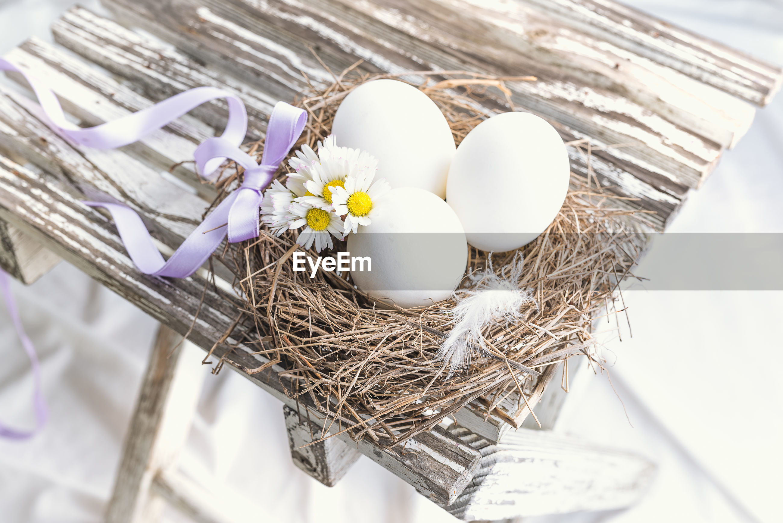 High angle view of eggs in nest by flowers on table