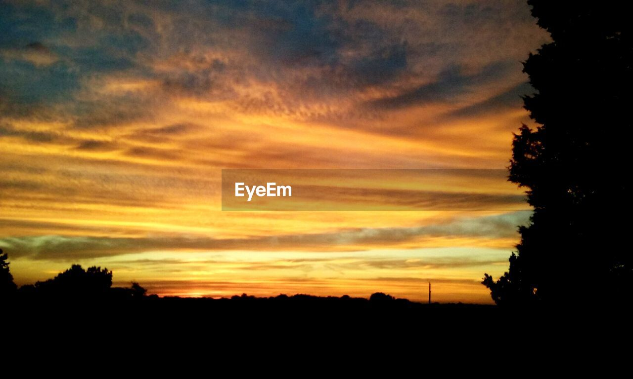 sunset, silhouette, orange color, beauty in nature, sky, nature, tree, scenics, cloud - sky, tranquil scene, dramatic sky, tranquility, dark, no people, landscape, outdoors