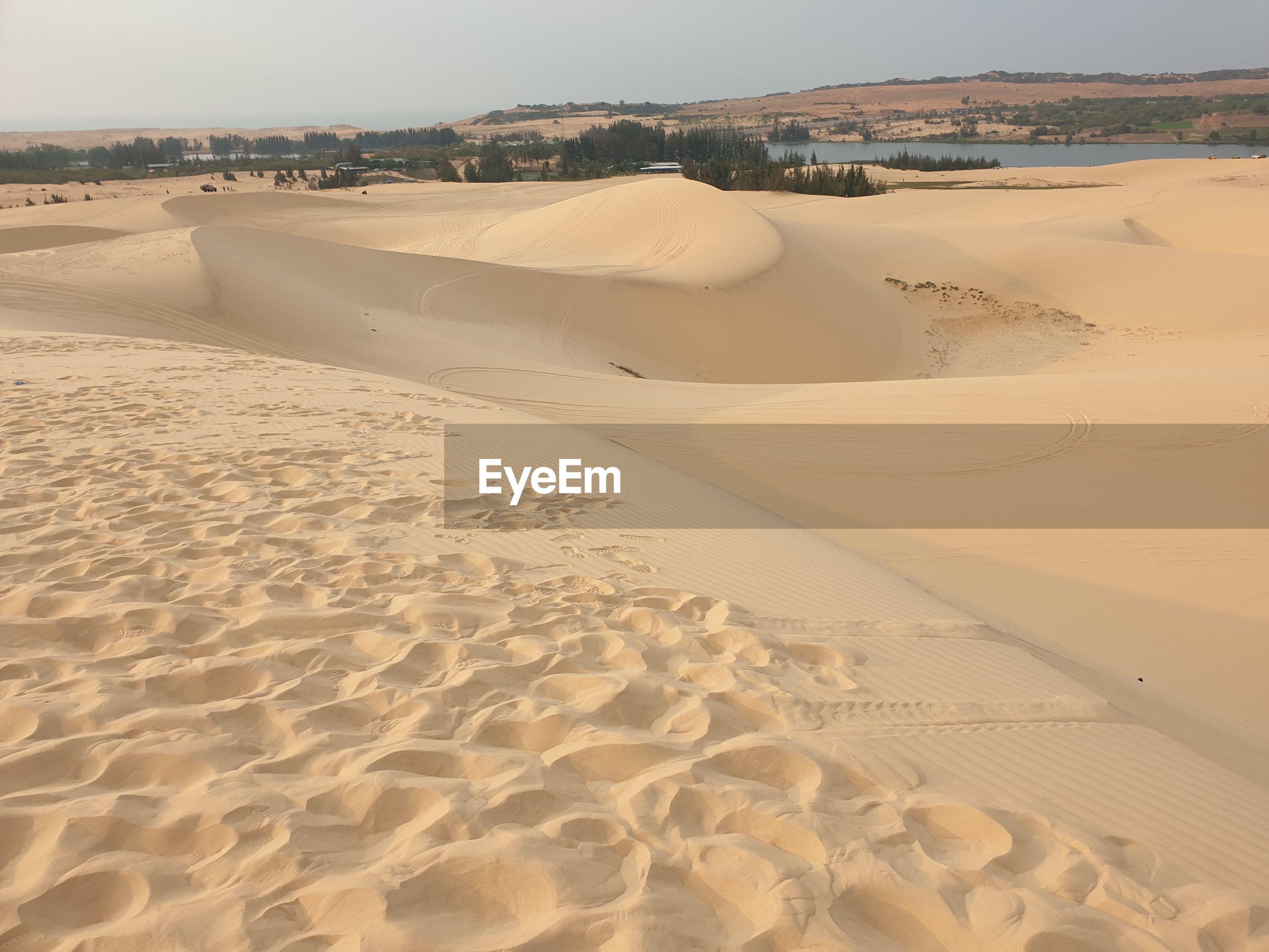 SCENIC VIEW OF SAND DUNE ON BEACH