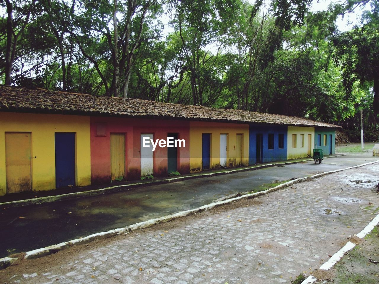 Street by multi colored houses against trees