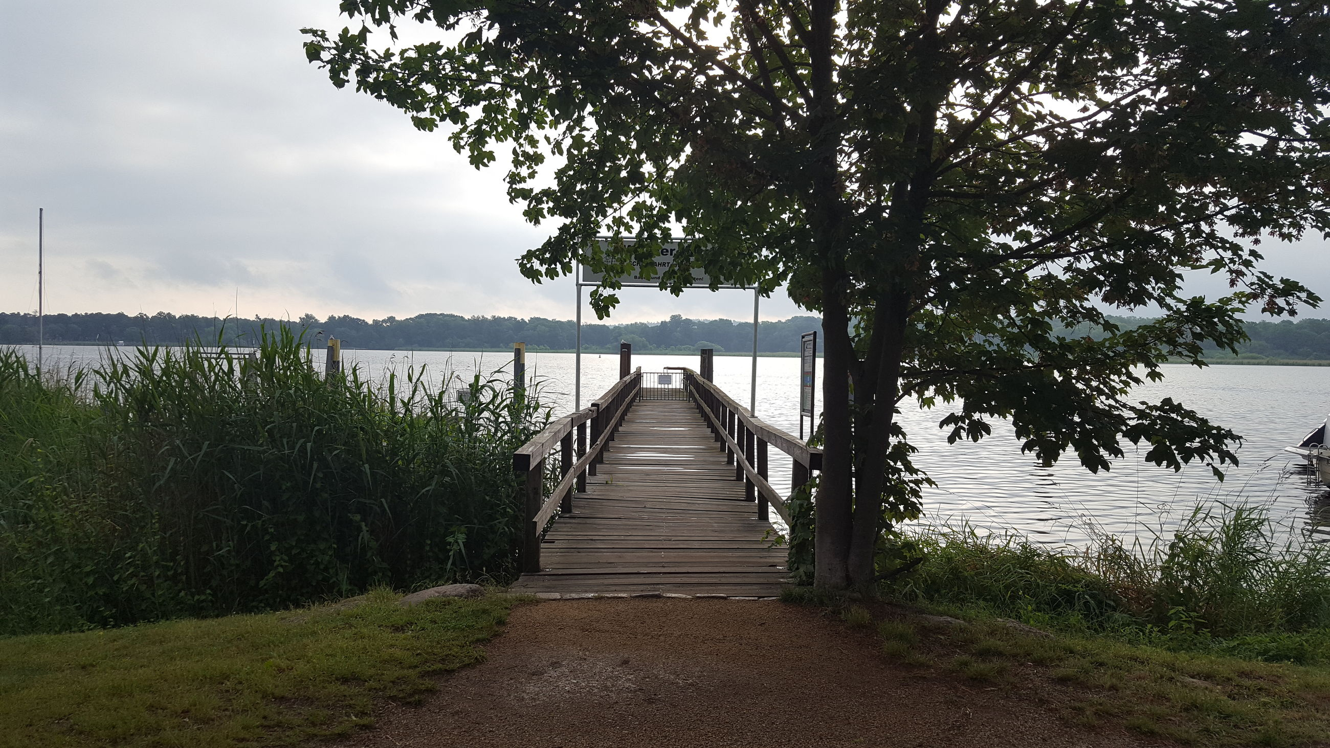 EMPTY WOODEN BENCH BY LAKE AGAINST TREES