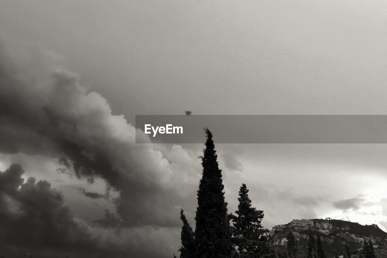 Low Angle View Tree And Mountain Against Cloudy Sky