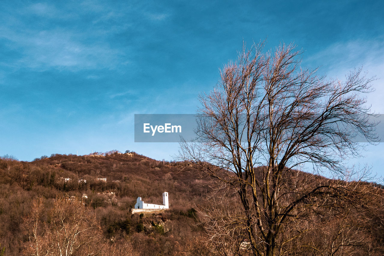 sky, tree, plant, bare tree, nature, no people, cloud - sky, built structure, architecture, blue, landscape, day, beauty in nature, building exterior, field, mountain, land, tranquility, scenics - nature, outdoors