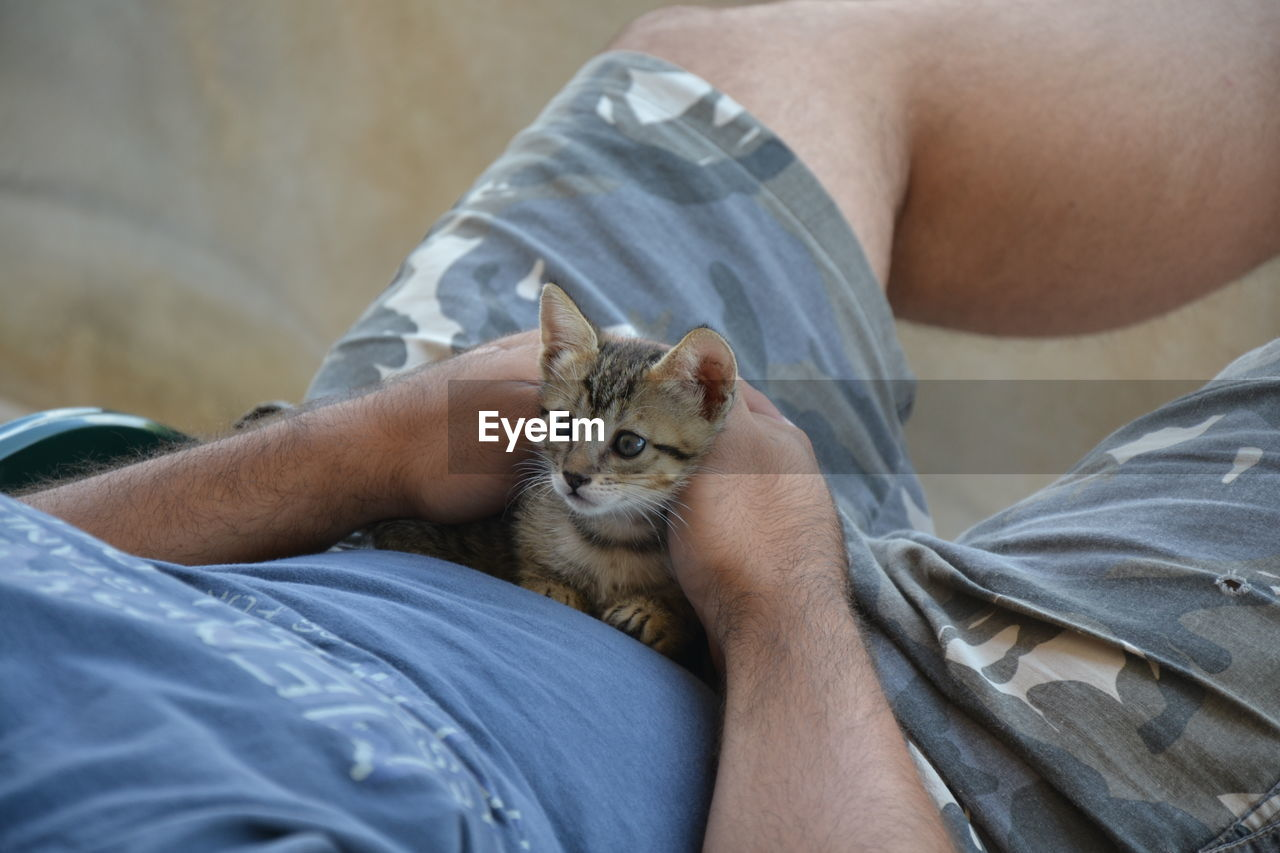 Close-up of man with kitten