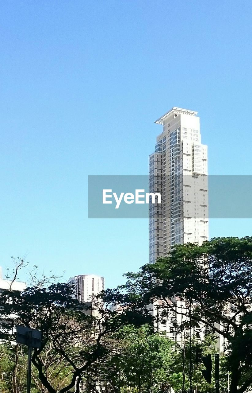 Tall Building With Trees In Foreground