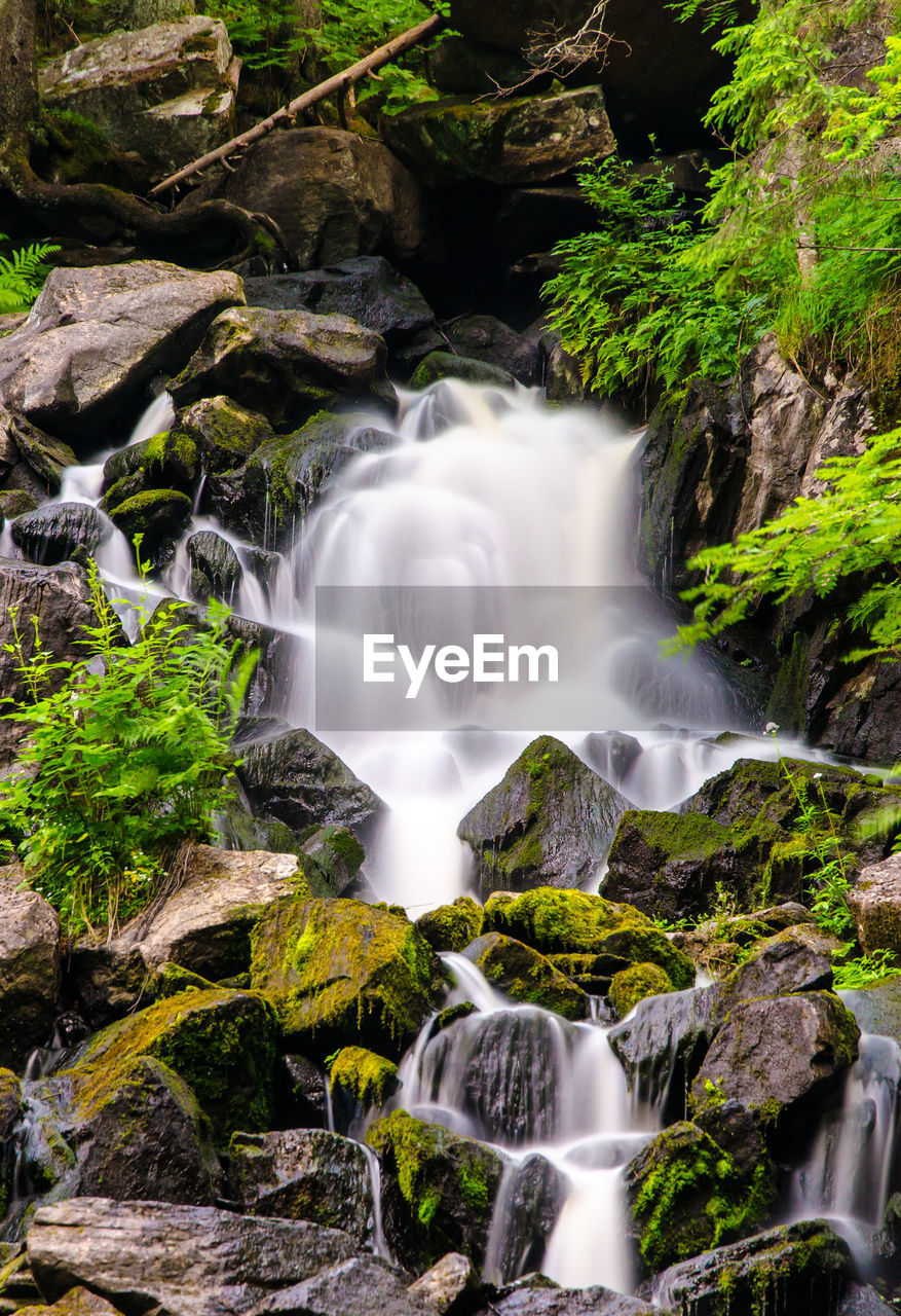 LOW ANGLE VIEW OF WATERFALL ON FOREST