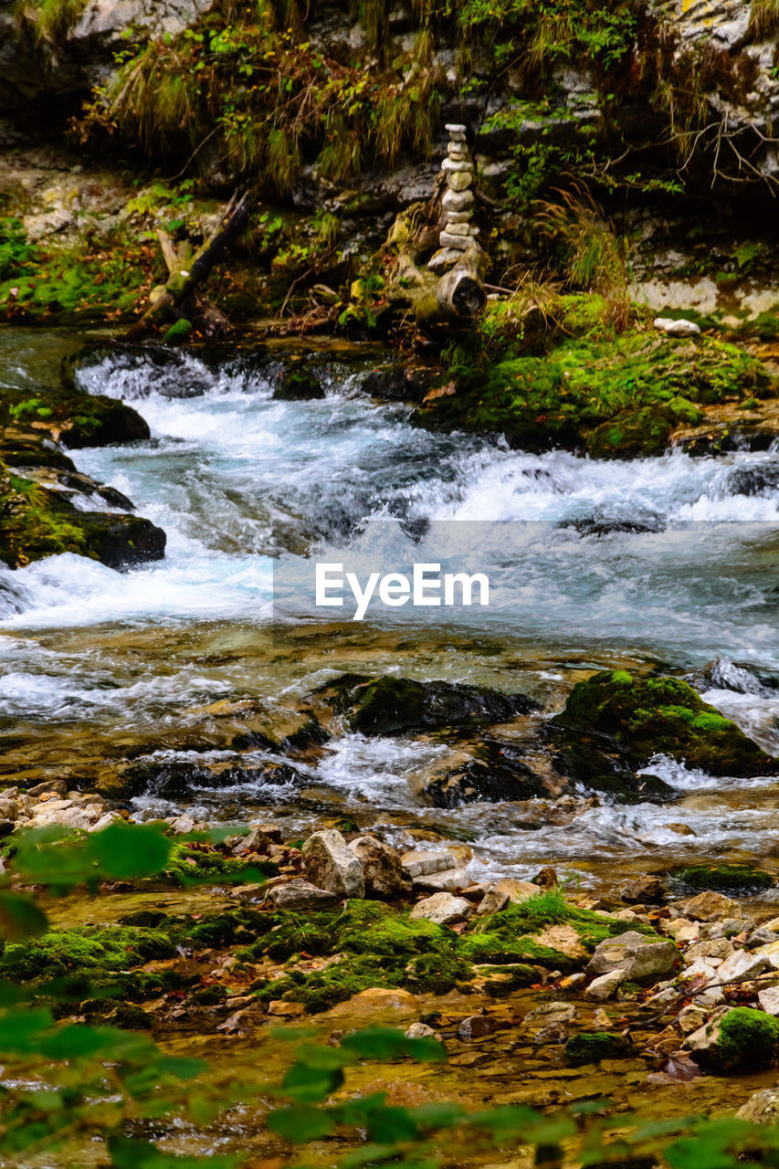 motion, water, plant, nature, beauty in nature, day, no people, blurred motion, rock, land, flowing water, solid, forest, sport, tree, rock - object, downloading, outdoors, long exposure, flowing, power in nature, purity