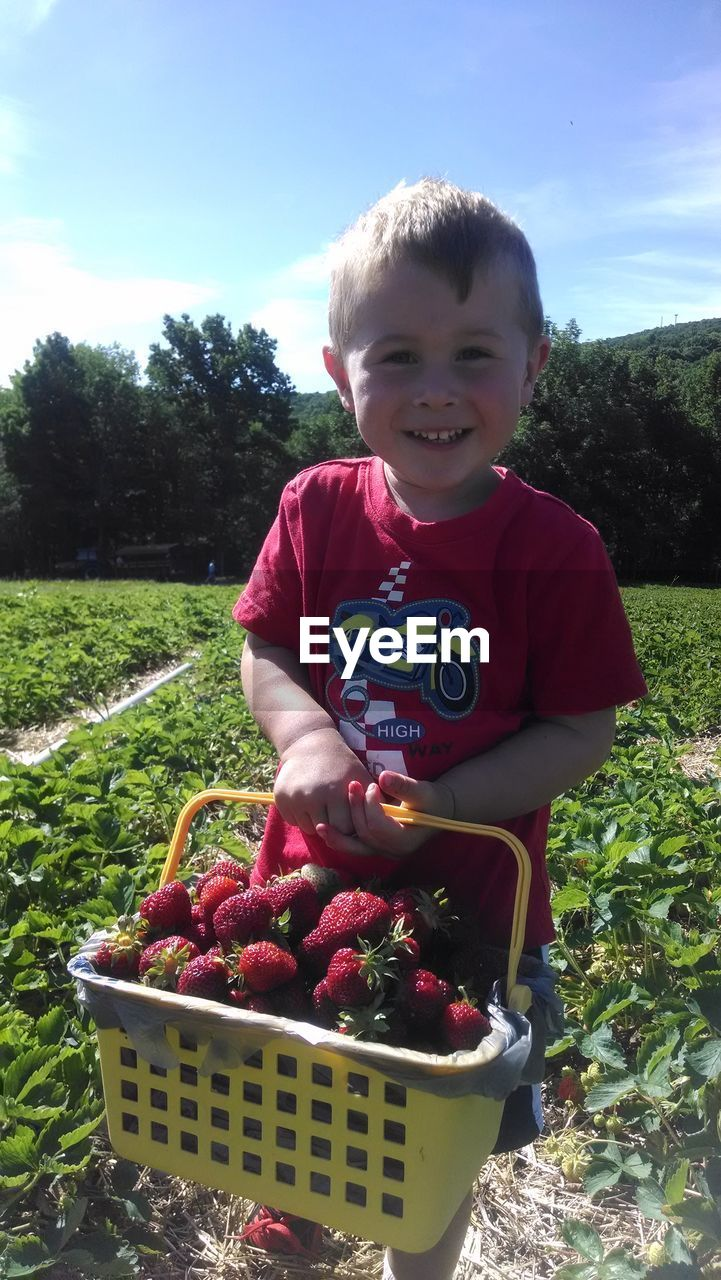 real people, childhood, basket, field, one person, day, smiling, outdoors, casual clothing, fruit, looking at camera, tree, boys, red, food and drink, lifestyles, leisure activity, elementary age, growth, freshness, cute, portrait, nature, healthy eating, happiness, sky, standing, food, grass