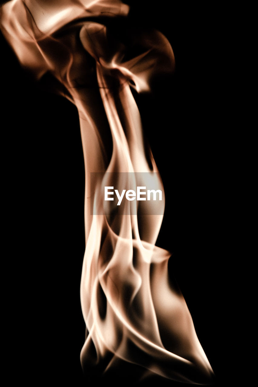 black background, studio shot, burning, close-up, flame, motion, no people, indoors, fragility